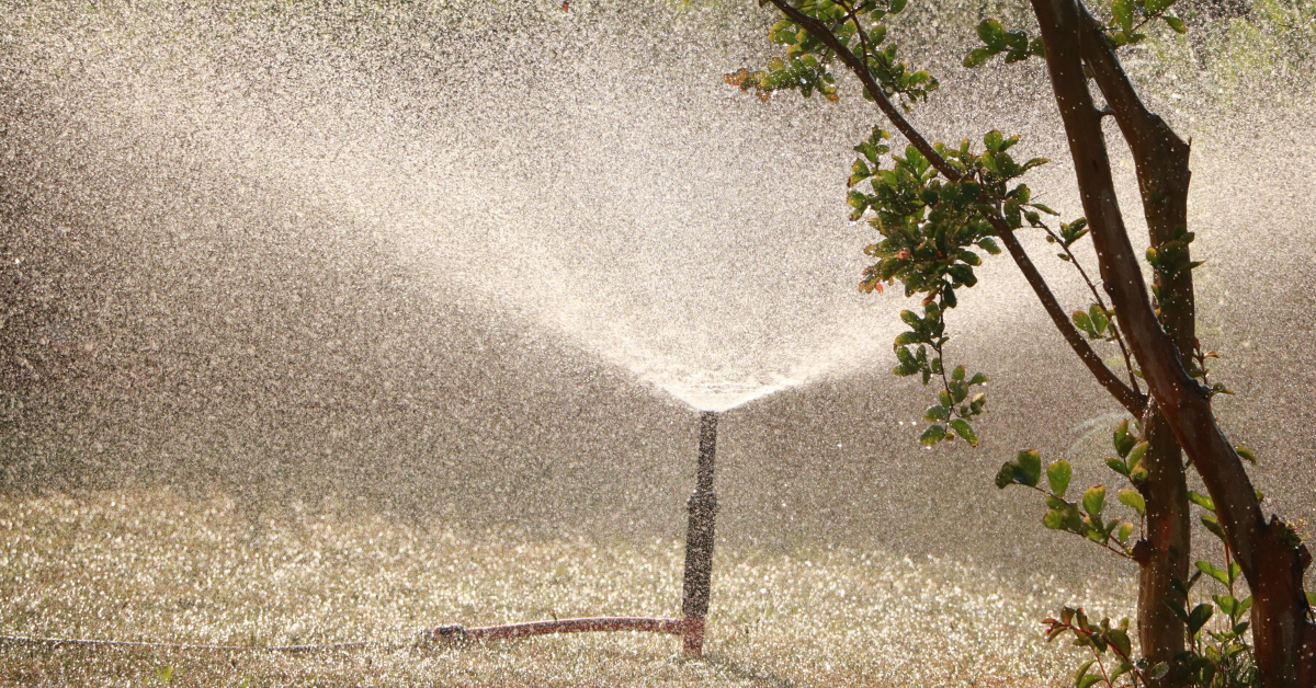 know your water restrictions for the southern highlands
