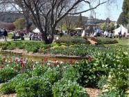 Corbett Gardens