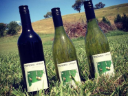 Tractorless Vineyard Tasting Room