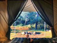 5 Awesome Camping Spots in the Southern Highlands