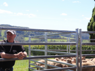 EXPERIENCE THIS // Maugers Paddock To Plate Tours