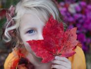 The Fold's Backyard Scavenger Hunt For Kids