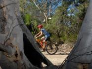 Welby Mountain Bike Path
