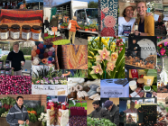 [CANCELLED FOR SEPTEMBER] Bowral Markets at Bowral Bowling Club